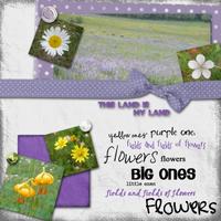 fields-of-flowers.jpg
