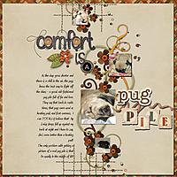 comfort2.jpg