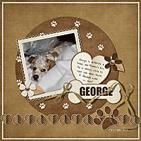 2_17_12_KC_PUPPY_LOVE_GEORGE.jpg