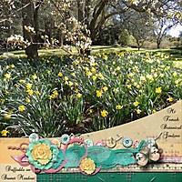 Daffodils2.jpg