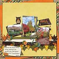 Fall-Days.jpg