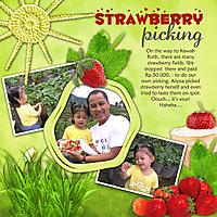 20111211-PickingStrawberry.jpg