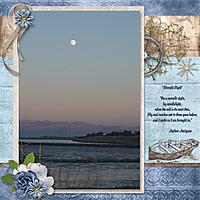 Moonlit_Night_copy.jpg