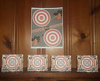 DSF_targets.jpg