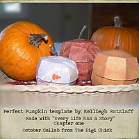 Perfect-Pumpkin.jpg