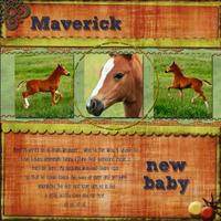 Maverick-for-upload.jpg