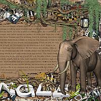 JungleinHere02.jpg