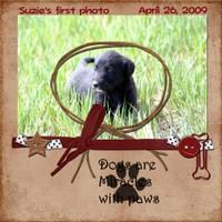 Suzies-First-Photo.jpg
