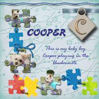 cooper2.jpg