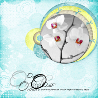 romantical-orchid.jpg