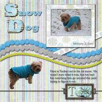 tucker_snow1_copy.jpg