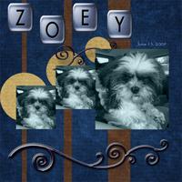 zoey1_copy.jpg