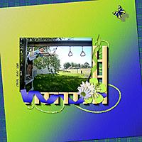 090730_Conal_Backyard.jpg