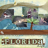 Florida_Keys_Turtle_Rescue_2006.jpg