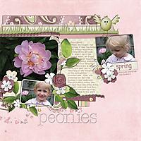 Peonies_June_2009_smaller.jpg