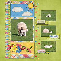 Spring-Lamb-Scraplift_Final.jpg