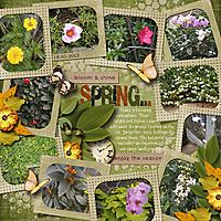 20120322-Flower2.jpg