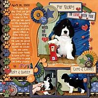 2000-Dillon-Puppy-1.jpg