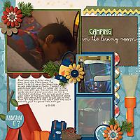 2012-06-21-campinginlivingroom_sm.jpg