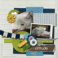 Attitude_copy1.jpg