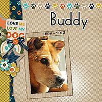 Buddy-web.jpg