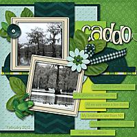 Caddo_copy.jpg