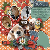 It_s_a_dog_s_life.jpg