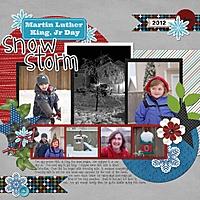 MLK_Snow_Storm_2012_600_x_600_.jpg