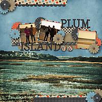 PlumIsland-web.jpg