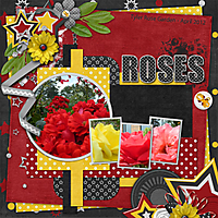 Roses_copy1.jpg