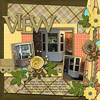 View_copy.jpg