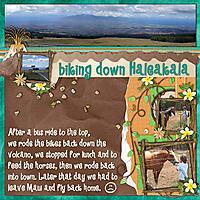 biking_haleakala_copy.jpg
