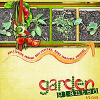garden_planted_copy.jpg
