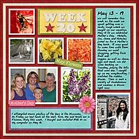 2012_Week20.jpg