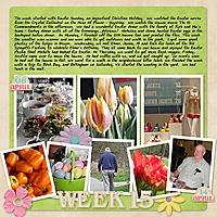 2012_Week_15.jpg