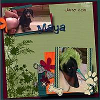Maya_Layout_2012_copy2.jpg