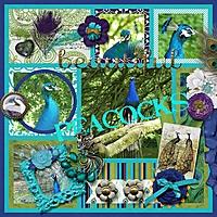 peacocks1.jpg