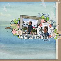 wailea_beach_copy.jpg