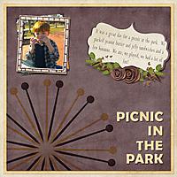picnic-at-park-2012_2.jpg
