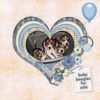 beagles_for_sale_copy.jpg