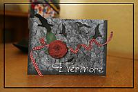 evermore.jpg