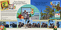 Palm-Harbor_Honeymoon-Island-Wednesday-Get-awayDFD_MemoryLane1-copy.jpg