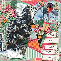trees-cardinal-dec-2012.jpg