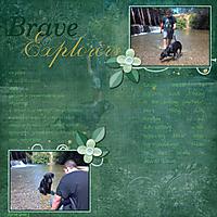 Brave_Explorers_Gallery.jpg