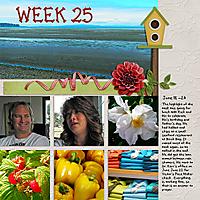 2013_Week_25.jpg