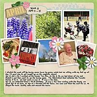 2013_week15.jpg