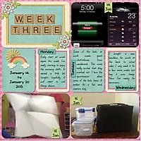 Week_3a.jpg
