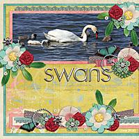 Swanscopy.jpg