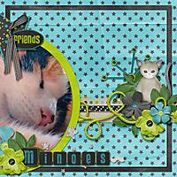 minoes-web.jpg