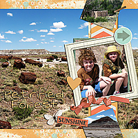 template_1_2013-08_Petrified_Forest.jpg